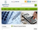 Chartered Accountant & Ca Service In India|Acvindi