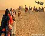 Jaisalmer Tour Packages By Best Travel Agent