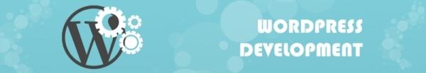 Wordpress Development Company | Wordpress Web Development Services | Hire Wordpress Developer