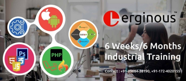 6 Months Industrial training in Android, iOS, Web Designing, PHP