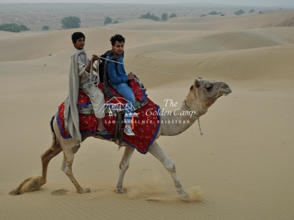 Arabian Nights Jaisalmer- The Golden Camp