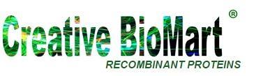 Recombinant Human FLT3LG