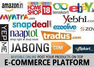 Ecommerce Marketing Support