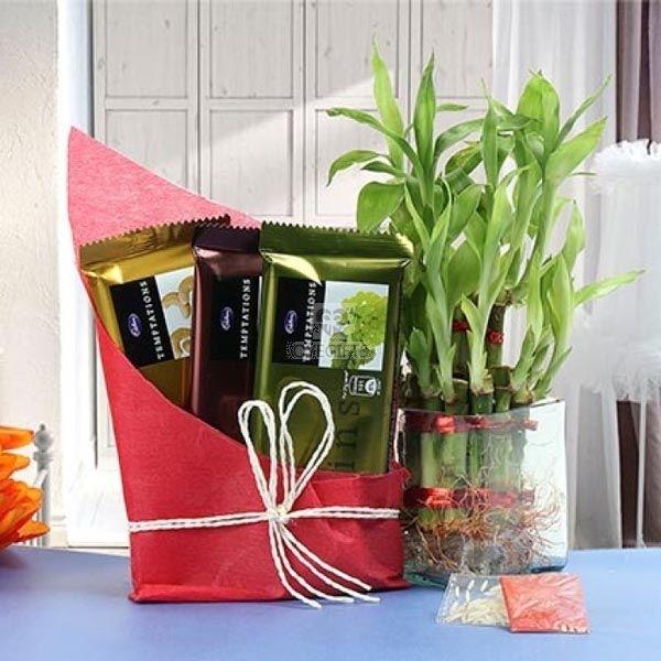 Prosperous Bamboo