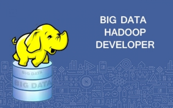Hadoop Developer Certification Training