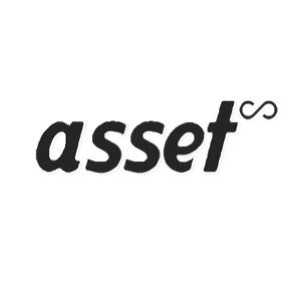 Asset Infinity