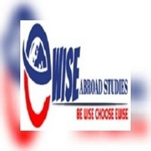 Ewise Abroad Studies