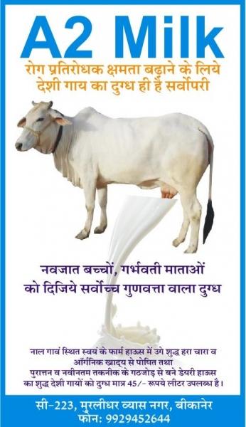 Anandam Dairy & Nursery